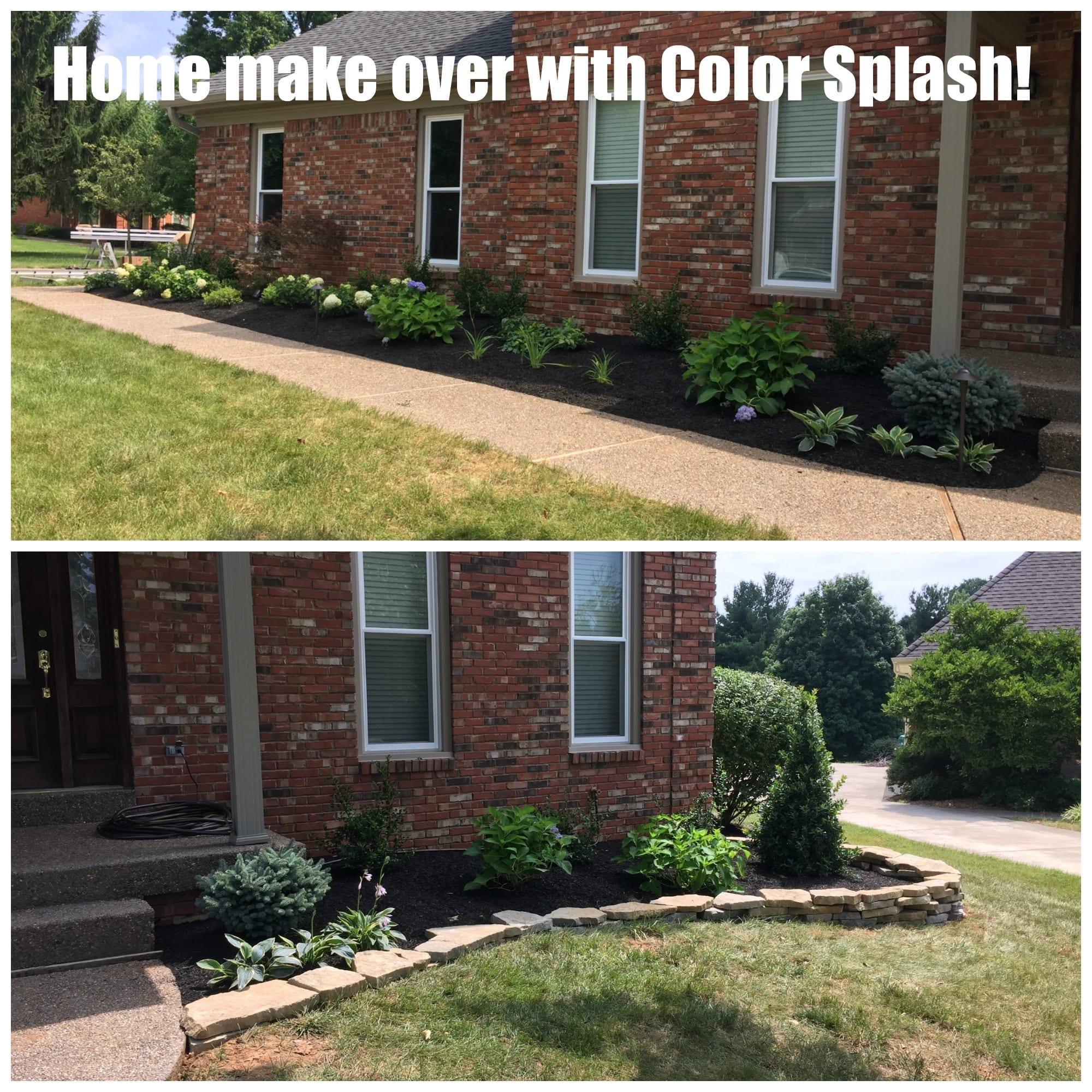 Color splash landscaping